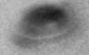 UFO filmed over Nazca Lines, Peru?